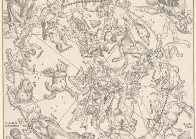 NGV Alberchi Durer 1515